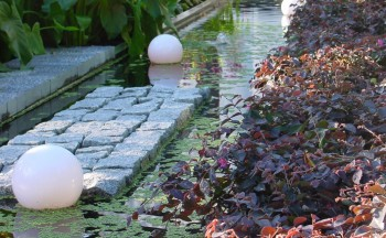 Formal pond from MIFGS with a box welded pond liner